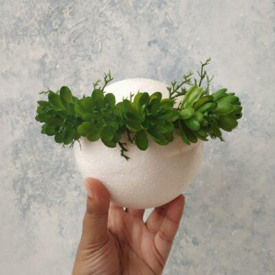 Tiara Green Succulent